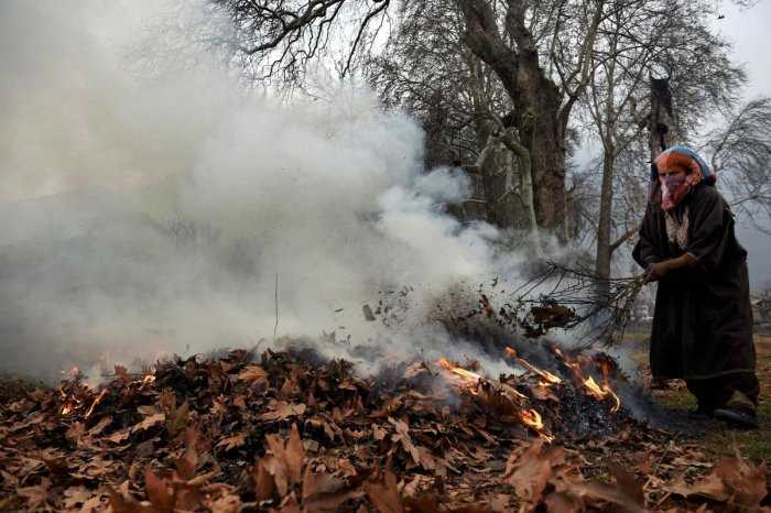 Dry leaves burning increases pollution levels in Kashmir