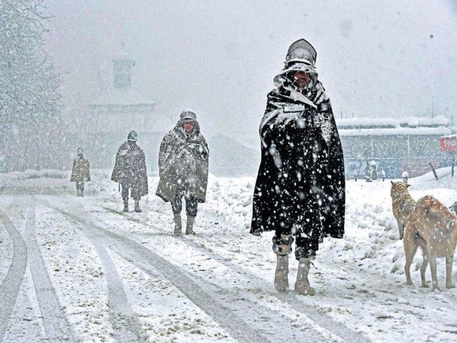 Srinagar freezes at minus 6 degrees Celsius