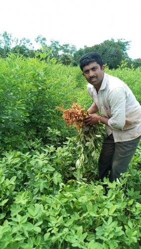 An integrated approach to farming