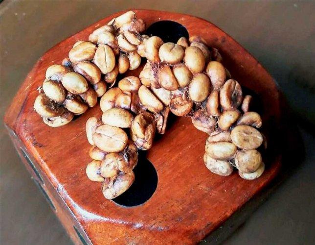 Art on coffee dust, talks on roasting beans at global expo