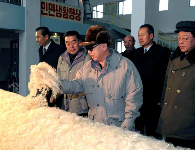 The fabulous story of North Korea's fabric made of stone