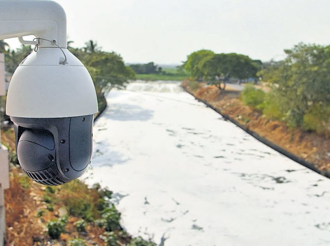 CCTV cameras failed to secure lake, says officials
