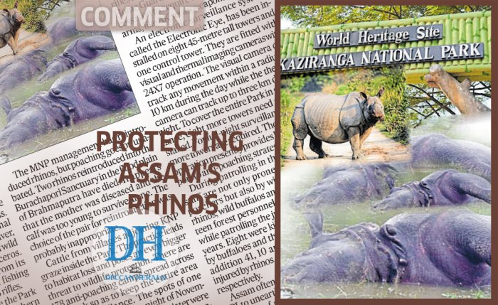 Protecting Assam's rhinos