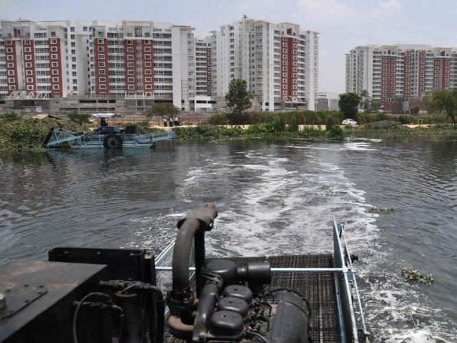 Desilting of Bellandur Lake to begin in a week