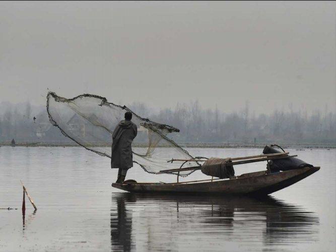 Sri Lankan Navy arrests 8 Indian fishermen