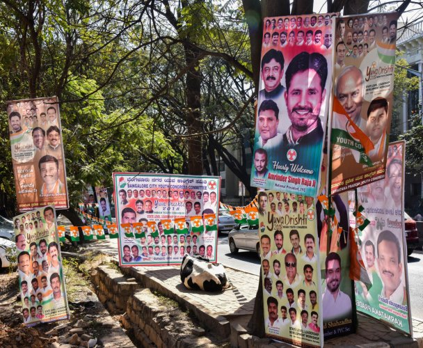 Plea on flex banners not clear, says HC