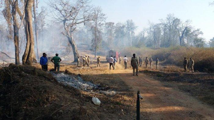 Forest dept steps up vigil to tackle fire mishaps