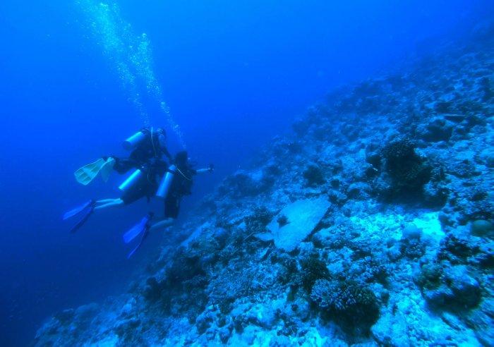 Mystical underwater in the Maldives