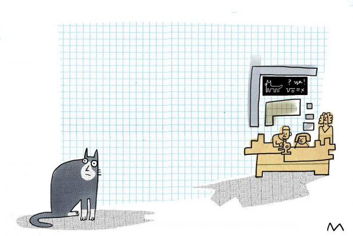 It's a dog's world in the lab. Where are the cats?