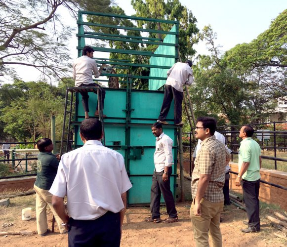 Bannerghatta Park welcomes Gowri, the giraffe