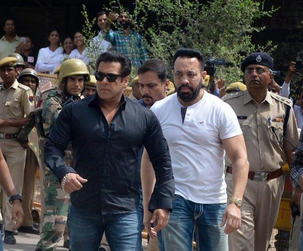 Salman gets 5 yrs jail in blackbuck case