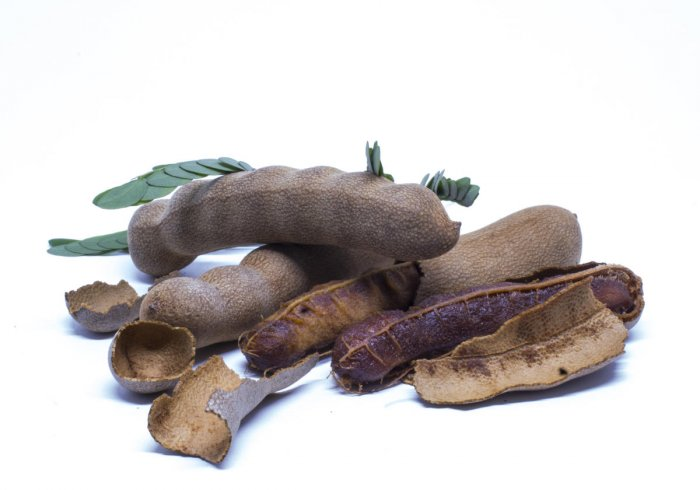 Tangy & therapeutic tamarind