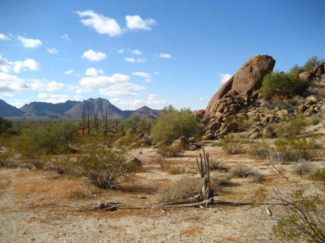 Changes in dry land ecosystems