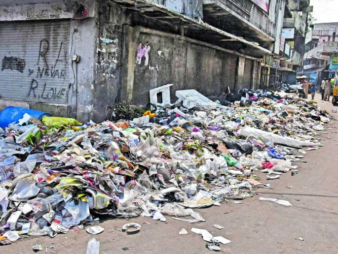 This year's campaign is focussed on ending plastic pollution. (DH file photo)