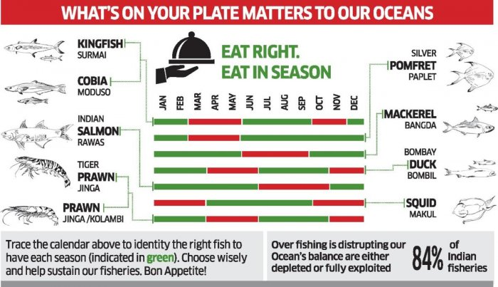 InSeason Fish has come up with a list that helps one in choosing the right seafood for every month. INFOGRAPHICS CREDIT: InSeason Fish