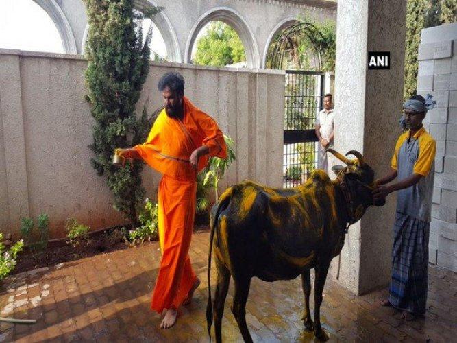 BJP candidate from Badami and Molakalamuru B Sriramulu performs gau puja at his residence Ballari on Saturday. DH PHOTO