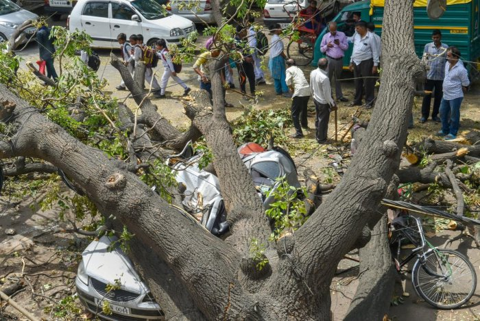 As many as 80 people were killed in five states due to thunderstorms and lightning strikes since May 13. PTI Photo