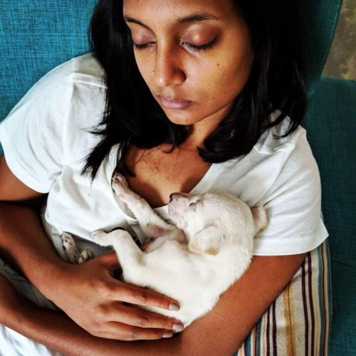 Anushree Thammanna provided foster care for Bagheera before he died.