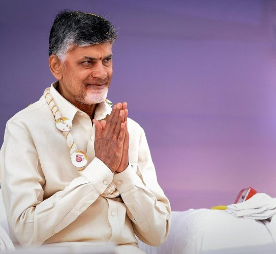 Andhra Pradesh Chief Minister N Chandrababu Naidu. PTI file photo