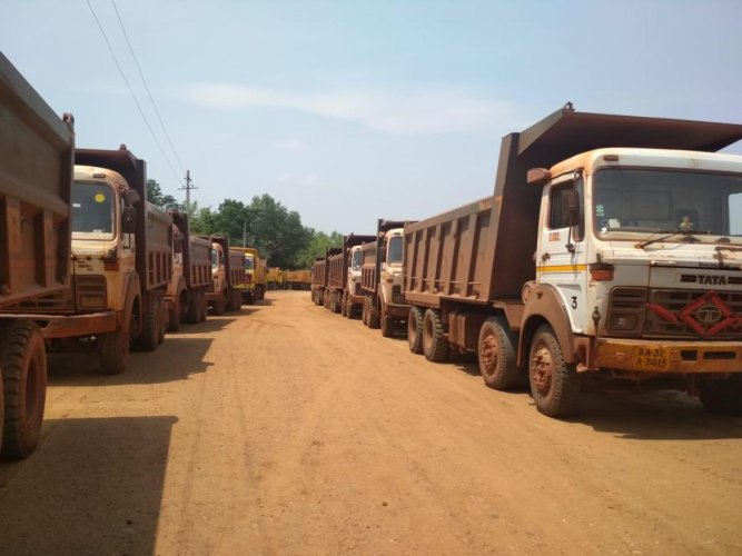 The 42 trucks carrying ore illegally seized by the Forest department. DH photo.