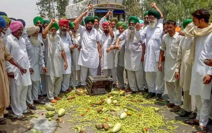 Farmers throw vegetables on a road during a state-wide protest, at Bagha Purana in Moga district of Punjab. PTI Photo