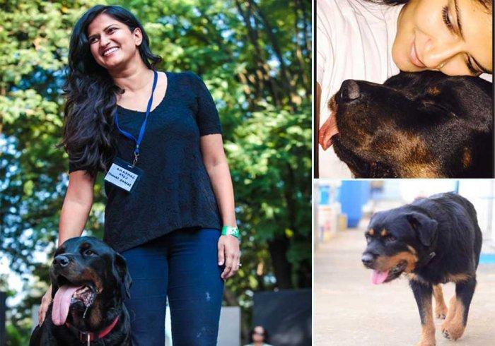 Sanjana Madappa with her dogs.