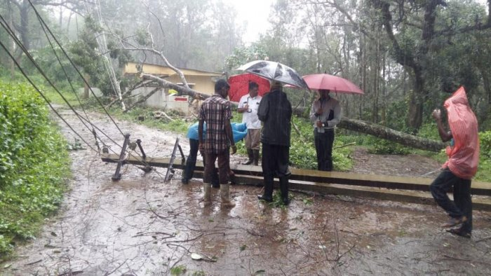 MLA Appachu Ranjan inspects an uprooted electricity pole following heavy rain on Somwarpet Road in Madikeri on Saturday. dh photo