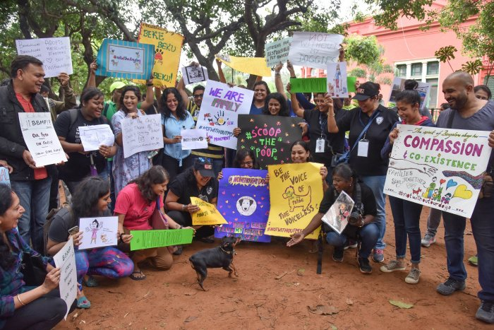 The city's pet lovers came together at Cubbon Park to protest against the new BBMP bye-law to limit the number of pet dogs in apartments and individual houses. DH Photo by S K Dinesh