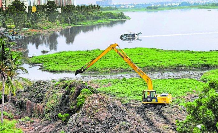 Excavators de-weeding the Bellandur Lake. DH FILE PHOTO
