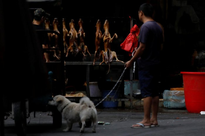 A man walks with his pet dog as he talks to a vendor selling dog meat at a market during the local dog meat festival in Yulin. Reuters photo