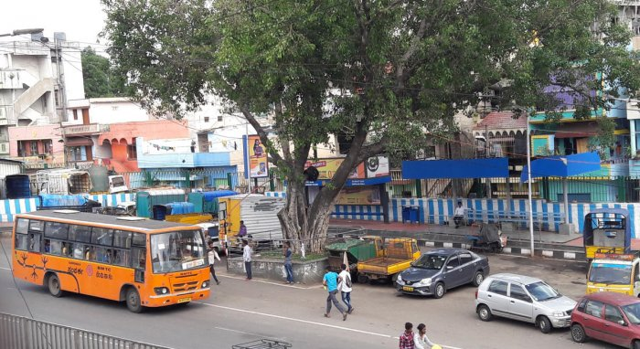 As private vehicles are parked near the bus stop at the Mysuru Road toll gate, BMTC buses are forced to stop along the main road. DH Photo
