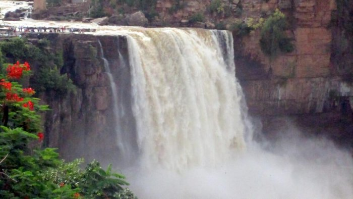 The Gokak Falls in Belagavi district has come alive due to the increased inflow to River Hiranykeshi, following heavy rain. dh photo