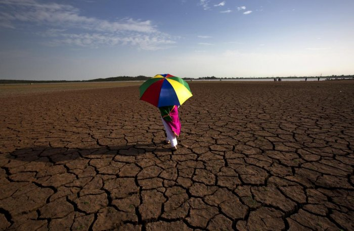 The findings are based on observational evidence from three warm periods over the past 3.5 million years when the world was 0.5-2 degree Celsius warmer than the pre-industrial temperatures of the 19th Century. (AP/PTI Photo)