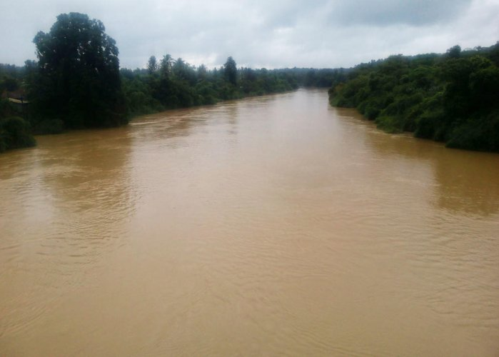 The swollen river Cauvery at Nelyahudikeri in Kodagu district, DH file photo