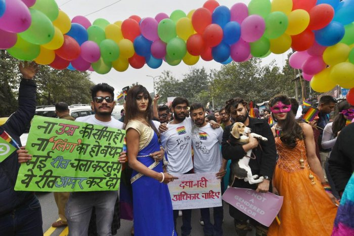 """Referring to the provision of the Mental Health Care Act, the bench said """"it also recognises the fact that such persons cannot be discriminated against on the ground of sexual orientation"""". PTI FIle Photo"""