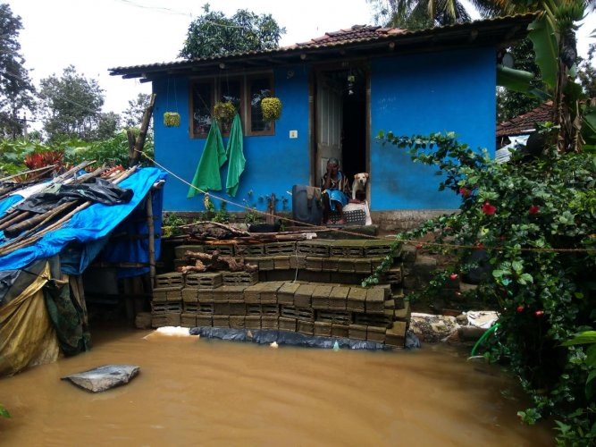 A woman sits with her pet outside her inundated house in Karadigodu near Siddapura and looks helplessly at the floods on Thursday.