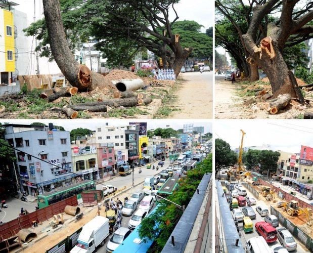 Tree and tree branches were chapped for the Jayanagar 9th block main road in Bengalur. Traffic movement was very slow on Jayadeva hospital flyover (from jayadeva towards BTM layout) due to Namma metro work on jayanagar and BTM layout in Bengaluru. Photo S