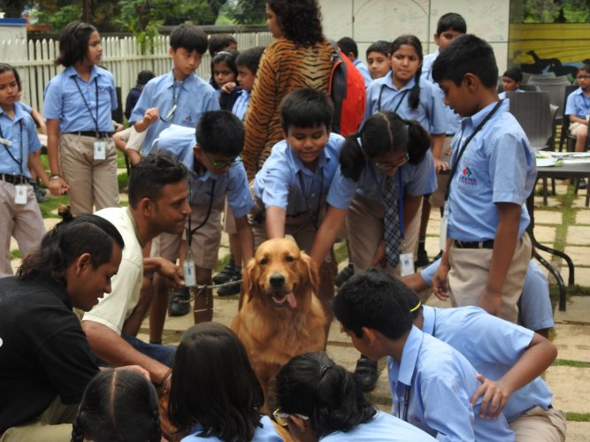 Vinayak Chaturvedi (in white T-shirt) with students from The Deens Academy during a pet therapy session.