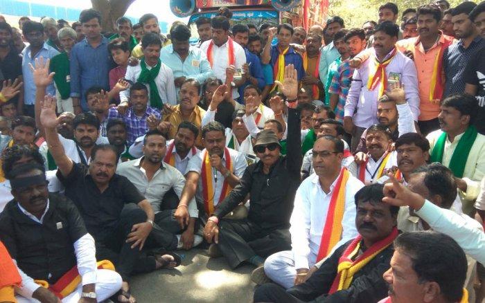 Mahadayi protesters. File photo.