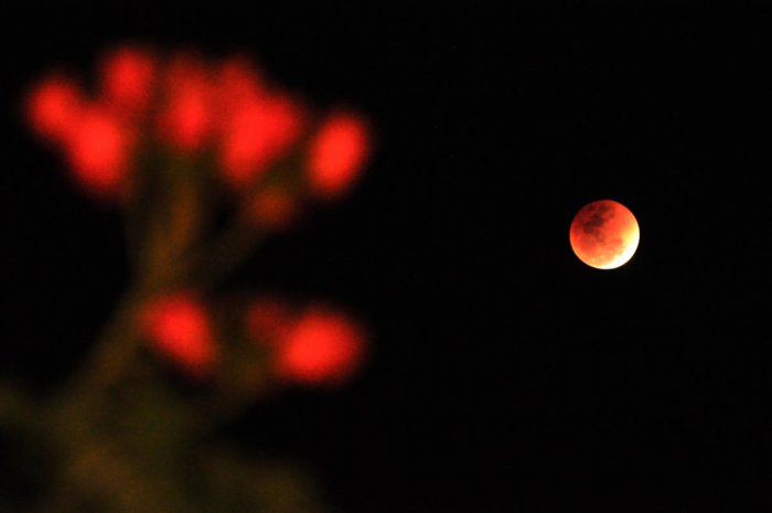 Super Blue Blood Moon Eclipse 2018