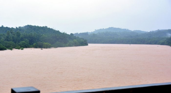 A view of River Kumaradhara in Uppinangadi on Friday. Photo/ Govindraj Javali