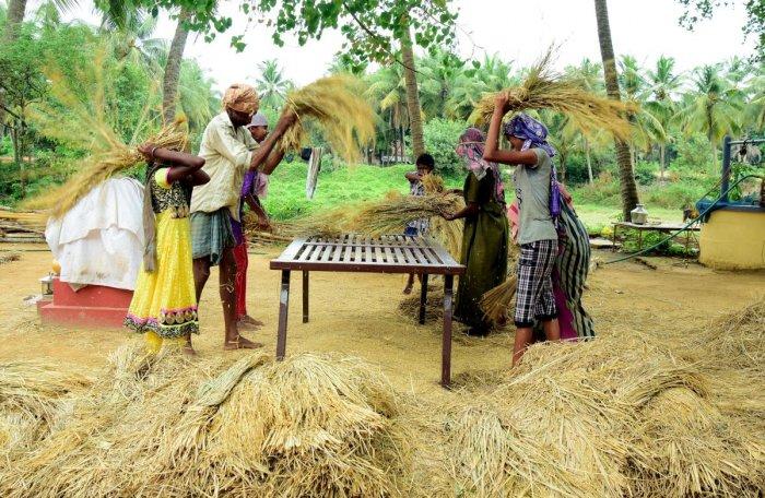 Karnataka government will write to President Ram Nath Kovind to promulgate the Karnataka Debt Relief Ordinance, 2018, to provide loan relief to farmers