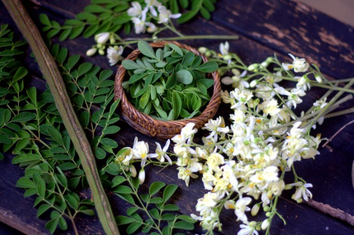 Moringa flowers are considered a delicacy in many places.They are often mixed into other foods.