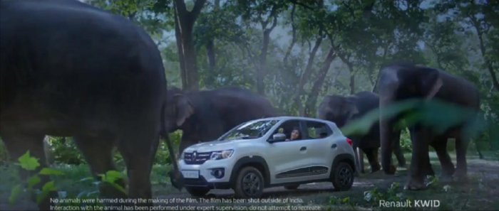 This ad imagines and portrays a rescue that is hazardous to try in real life, say wildlife experts.