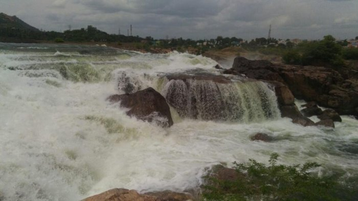 Water being released from the Stanley Reservoir at Mettur in Salem district of Tamil Nadu on Friday.