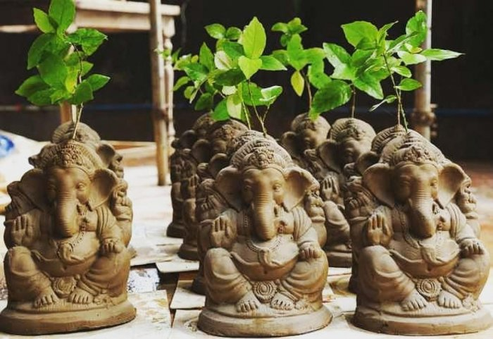 Ganesha idols embedded with seeds that later becomes a plant.