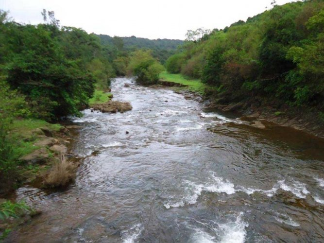 A view of the Mahadayi river.