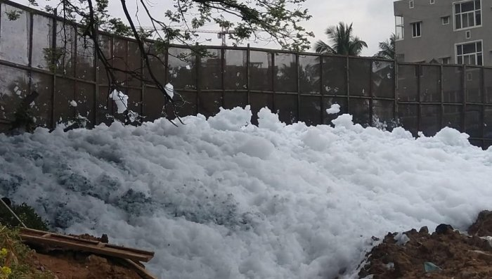 Accumulated foam at the Bellandur Lake weir on Wednesday. DH photo