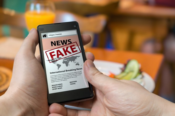 Union Electronics and IT Minister Ravi Shankar Prasad said the government had asked the social media companies to provide technological solutions to verify fake news and filter out provocative messages. Representative image