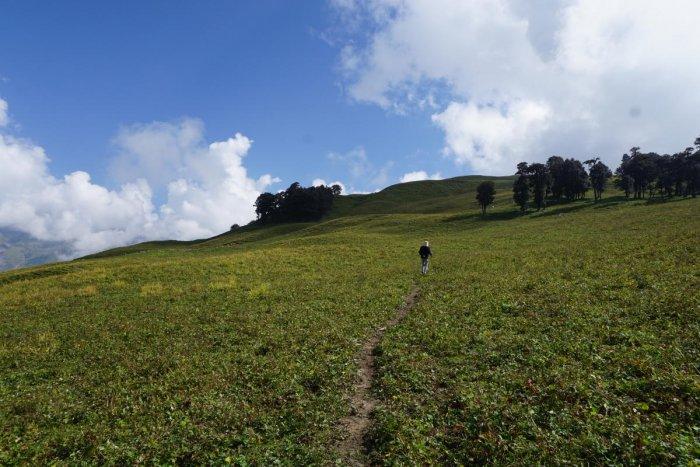 A trekking trail near Bhrigu Lake, Himachal Pradesh